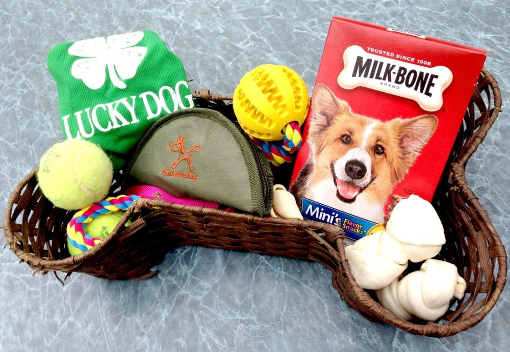 Don't Forget Fido! Make Your Pet an Easter or Holiday Gift Basket