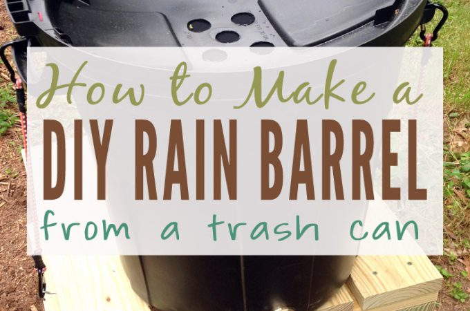 How to Make a DIY Rain Barrel to Water Your Garden