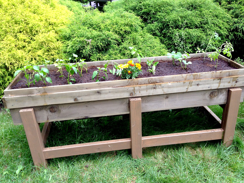 How to Build a DIY Planter Box for the Garden that's Raised