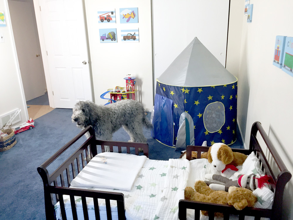 Turning a Guest Room into a Cute Toddler Boys Room