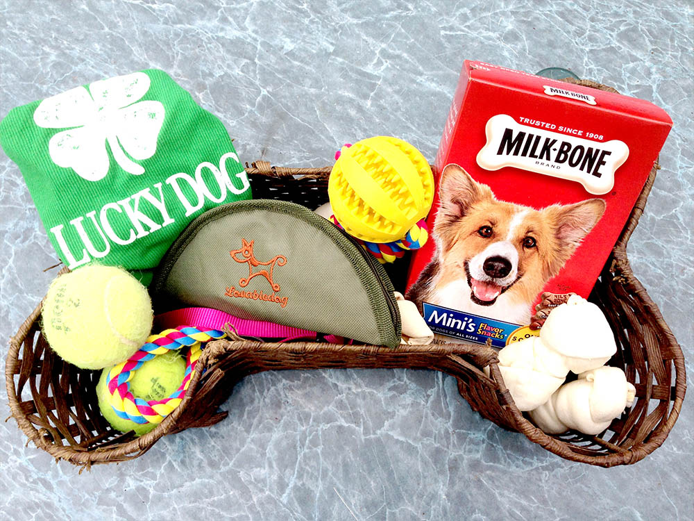 DIY Homemade Dog Gift Basket
