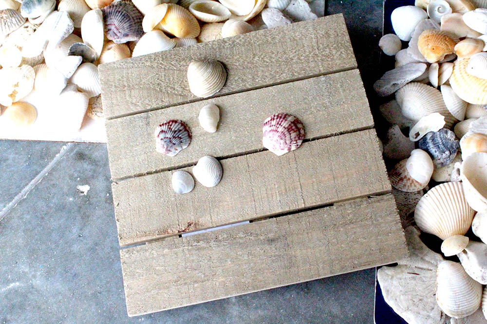 how to make seashell wall art with a wooden plaque and seashells from the beach