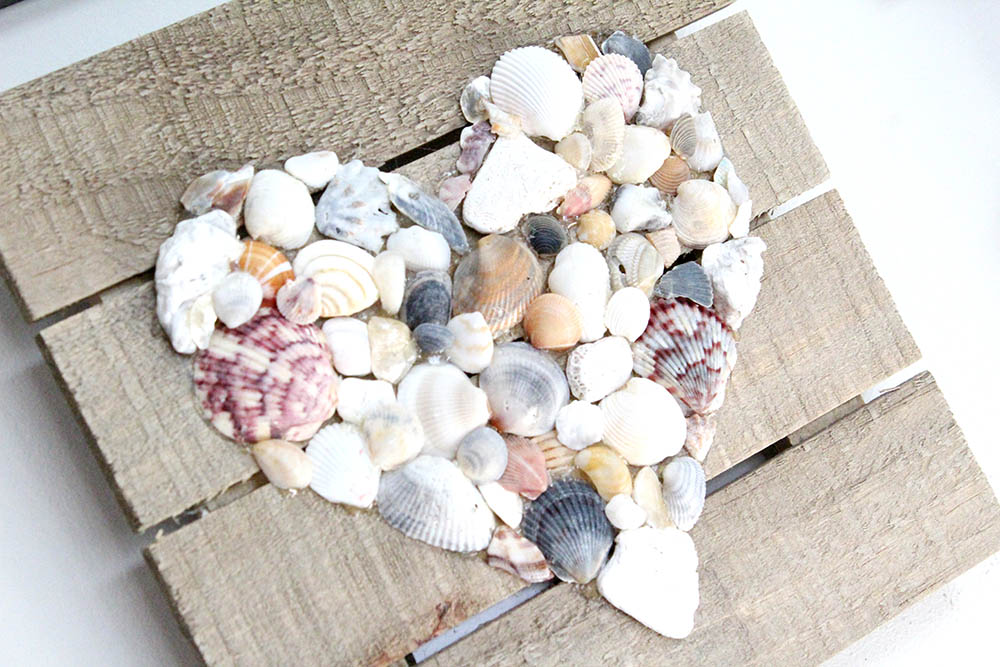 DIY seashell wall hanging using shells from the beach